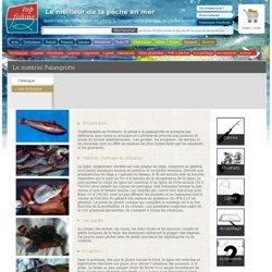 Informations sur la pêche Palangrotte