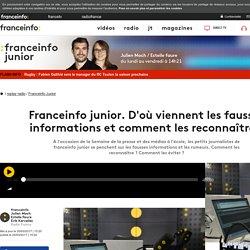 Franceinfo junior. D'où viennent les fausses informations et comment les reco...