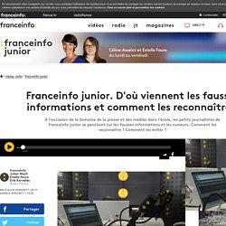 Franceinfo junior. D'où viennent les fausses informations et comment les reconnaître ?