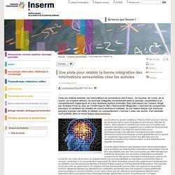 Une piste pour rétablir la bonne intégration des informations sensorielles chez les autistes