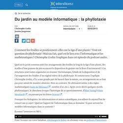 Du jardin au modèle informatique : la phyllotaxie