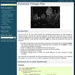 Traitement d'images PGM — DUT Informatique Semestre 1 - Travaux pratique de programmation en java