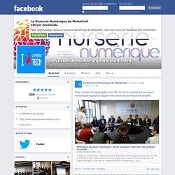 La Nurserie Numérique de Malestroit - Malestroit - Informatique/technologie