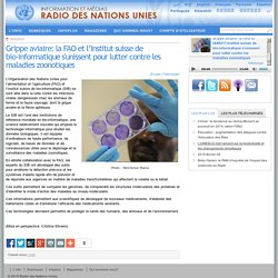 UNMEDIA 10/02/15 Grippe aviaire: la FAO et l'Institut suisse de bio-informatique s'unissent pour lutter contre les maladies zoonotiques