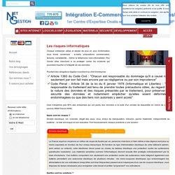 Les risques informatiques - virus, intrusion, effacement de données, fraudes...