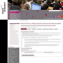 Master Projets Informatiques et Stratégie d'Entreprise (PISE), Métiers des Etudes, du Conseil et de l'Intervention (MECI)