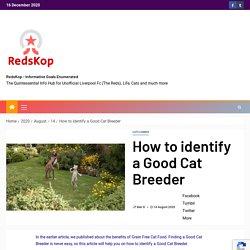 RedsKop - Informative Goals Enumerated