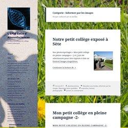 Informer par les images – L'EPId'ÉMIe d' AbonnEsciences