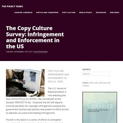 The Copy Culture Survey: Infringement and Enforcement in the US | Media Piracy | The American Assembly