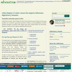 Cómo limpiar el colon: conoce las mejores infusiones digestivas y laxantes - Innatia.com