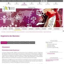 Licence Ingénierie des Données (Pau)