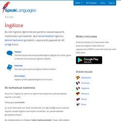 İngilizce'yi online öğrenin