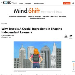 Why Trust Is A Crucial Ingredient in Shaping Independent Learners