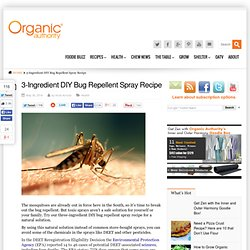 3-Ingredient DIY Bug Repellent Spray Recipe