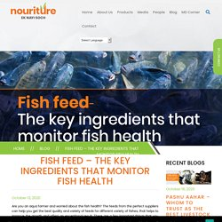 Fish Feed – The key ingredients that monitor fish health