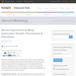 Secret Ingredients to Blog Subscriber Growth: Persistence & Promotion