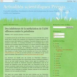 Actualités scientifiques Prépas : Des inhibiteurs de la méthylation de l'ADN efficaces contre le paludisme