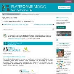 MOOC Botanique - initiation: Conseils pour déterminer et observations