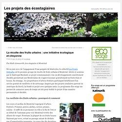 La récolte des fruits urbains : une initiative écologique et citoyenne