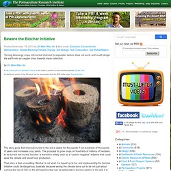 Beware the Biochar Initiative