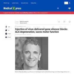 Injection of virus-delivered gene silencer blocks ALS degeneration, saves motor function