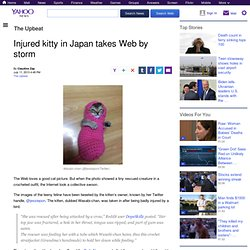 Injured kitty in Japan takes Web by storm