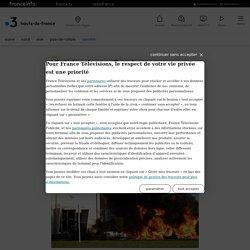 Victoire des ex-Goodyear d'Amiensaux prud'hommes : la fermeture était injustifiée, ils seront indemnisés