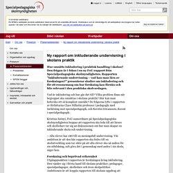 Ny rapport om inkluderande undervisning i skolans praktik