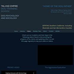 Inland Empire & SoCal Dog Training