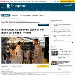 Innovation. Aquastream élève un ver marin qui soigne l'homme