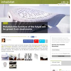 Pollution-free furniture of the future will be grown from mushrooms