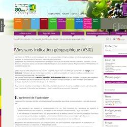 Innovation et qualité - Appui à la filière - Vin - Vin et cidriculture