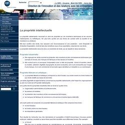 Direction de l'innovation et des relations avec les entreprises du CNRS - Terme clés