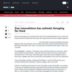 Zoo innovations has animals foraging for food