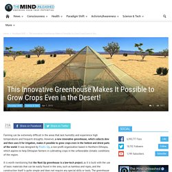 This Innovative Greenhouse Makes It Possible to Grow Crops Even in the Desert!