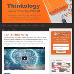 Online Teacher Education - Video How The Brain Works