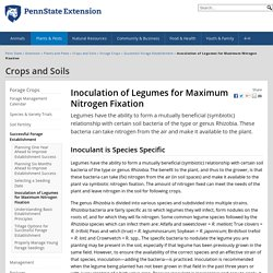 Inoculation of Legumes for Maximum Nitrogen Fixation — Crops and Soils