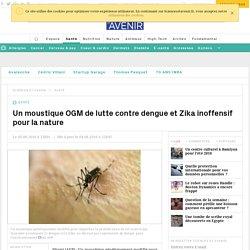 Un moustique OGM de lutte contre dengue et Zika inoffensif pour la nature - Sciencesetavenir.fr