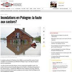 Inondations en Pologne: la faute aux castors?