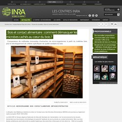 INRA - Bois et contact alimentaire