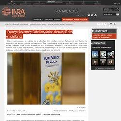 2013 - Protéger les oméga 3 de l'oxydation : le rôle clé des émulsifiants