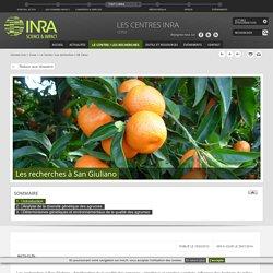 INRA - UE Citrus