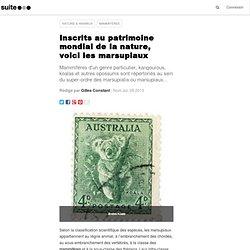 Inscrits au patrimoine mondial de la nature, voici les marsupiaux