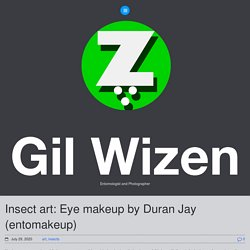 Insect art: Eye makeup by Duran Jay (entomakeup) - Gil Wizen