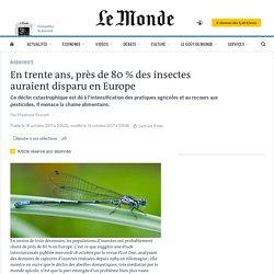 En trente ans, près de 80% des insectes auraient disparu en Europe