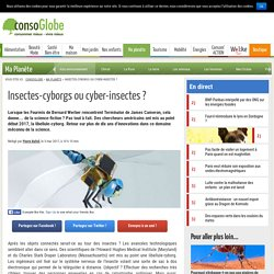 Insectes-cyborgs ou cyber-insectes ?