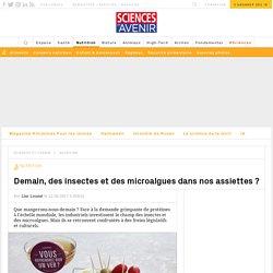 Demain, des insectes et des microalgues dans nos assiettes ?