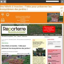 Des hôtels à insectes : l'idée pour préserver les écosystèmes des jardins