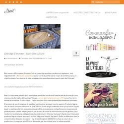 L'élevage d'insectes en Europe : règlementation et intérêts