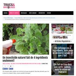Un insecticide naturel fait de 4 ingrédients seulement! - Trucs et Astuces - Des trucs et des astuces pour améliorer votre vie de tous les jours - Trucs et Bricolages - Fallait y penser !